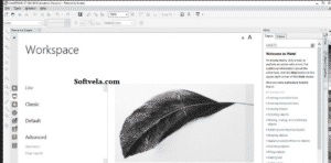 workspace in the corel draw 10