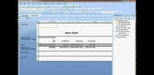 company sales order report making